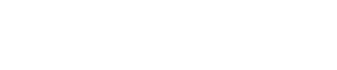 01.Automotive EMS field