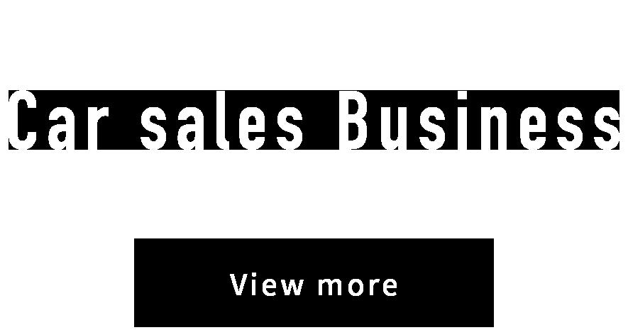 Car Sales Business